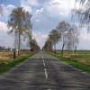 Droga na Roztoczu Wschodnim