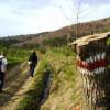 Szlak w Mszanie Dolnej